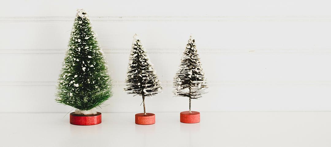 Christmas Trees by Georgie Brooks