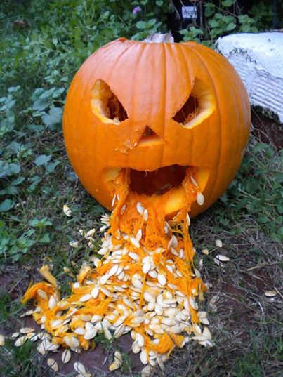 Halloween pumpkin throwing up