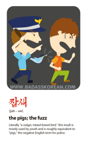 BeingBad-짭새-jjab-sae-the-pigs-the-fuzz-police-derogatory