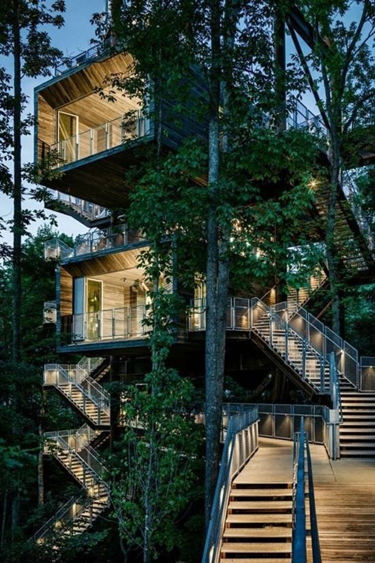 Amazing House Design Architecture: 25 Amazing Tree House Designs (25 Photos)