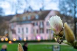 Baden-Baden-04266