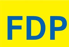 Die Antworten der FDP