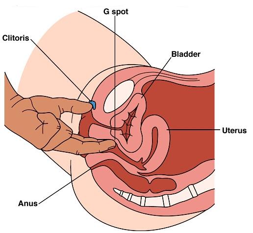 Fingering Techniques To Please A Woman-9194