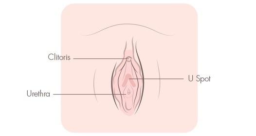 u spot masturbation techniques
