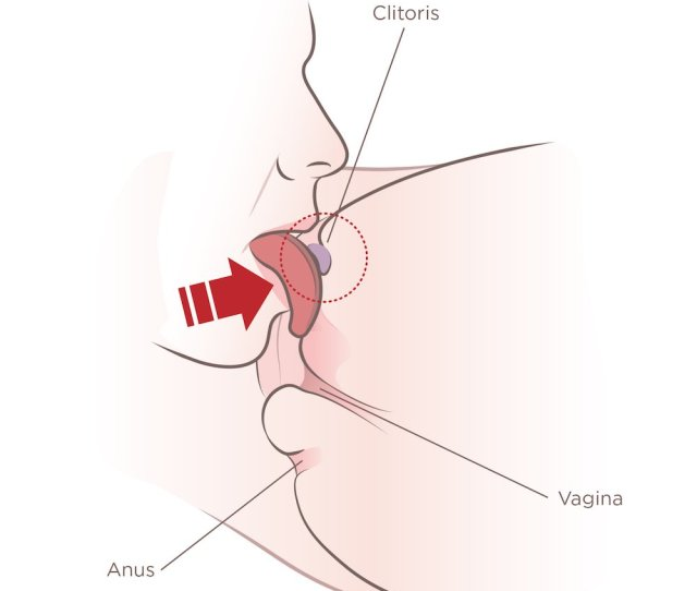 Tongue Pressed Up Against The Bottom Of Clitoris When Performing Cunnilingus So