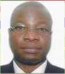 Mr. Akin Ogunbiyi (Member)