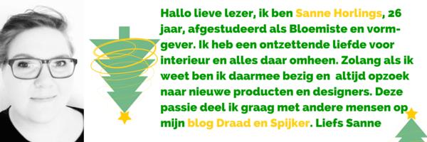 Sanne Horlings van Draad en Spijker_deelnemer van de BDIYC
