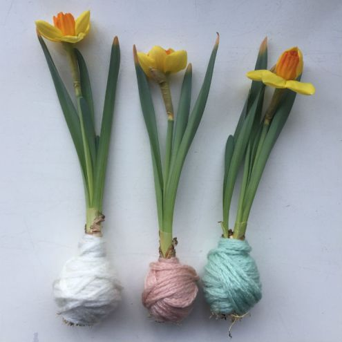 DIY bloembollen met wol - goedkoop en unieke bloembollen decoratie