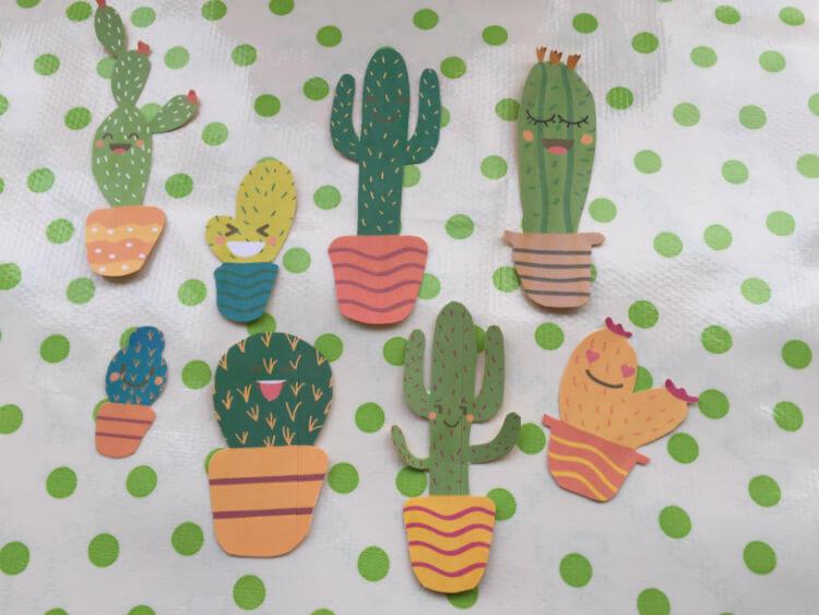 Cactus Slinger - Cactus DIY_03