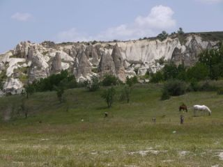 Cappadocia, which means the land of horses. Some are still there