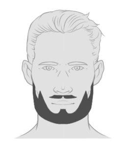 Der Hollywoodian Der Bart Der Stars Blackbeards