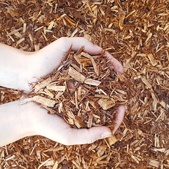 Cypress mulch--we bag mulches and this is a perennial favourite.