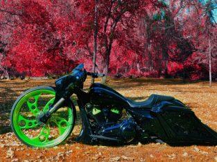 Custom 30″ Harley Electra Glide Ultra Limited