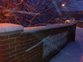 Whoopie! It is snowing!