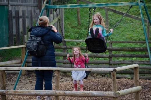 Fun on the swing