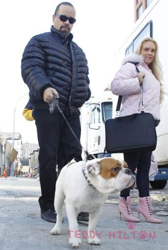 Ice T and Coco (9)