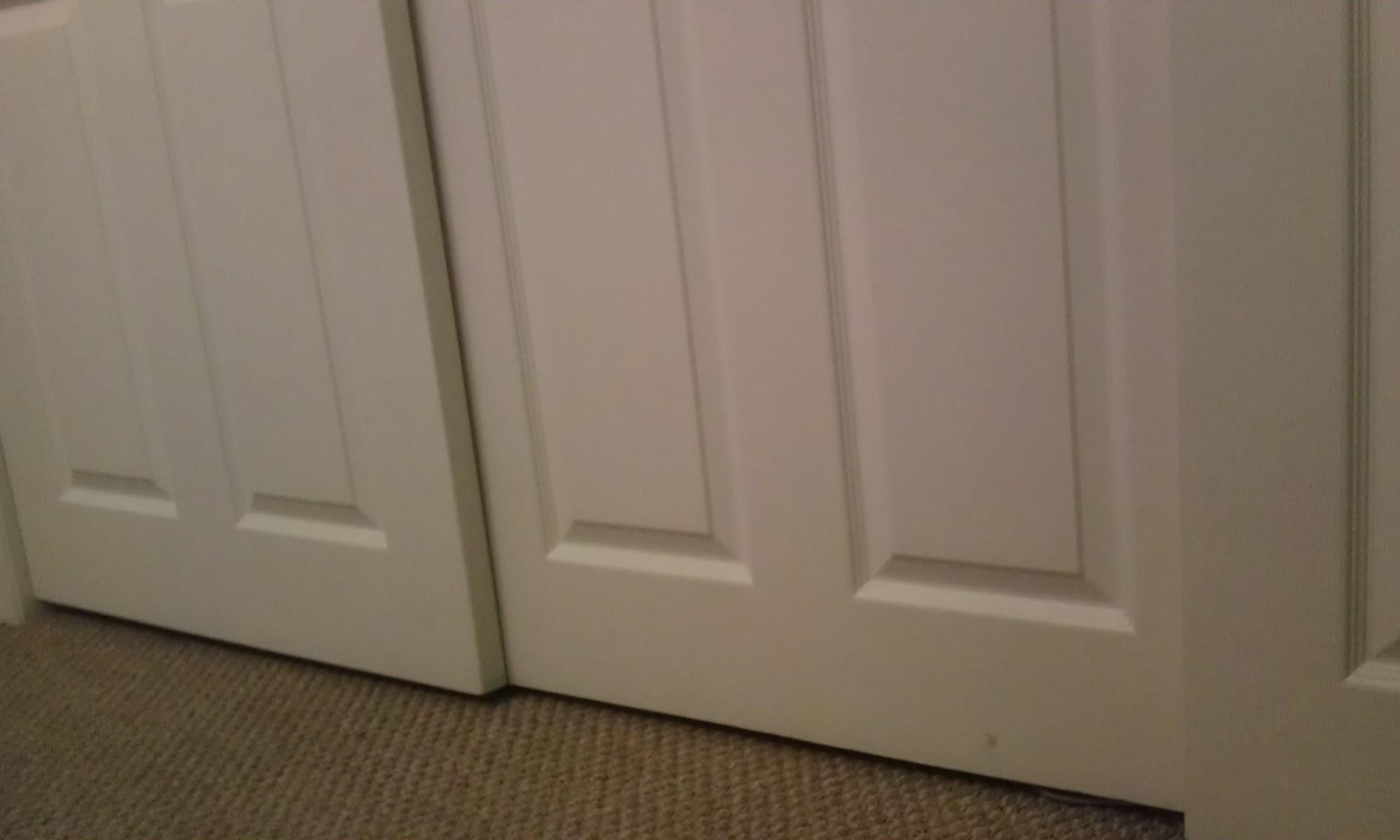 A closet for a diabetic cat to explore