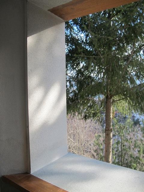 20120216-124505.jpg