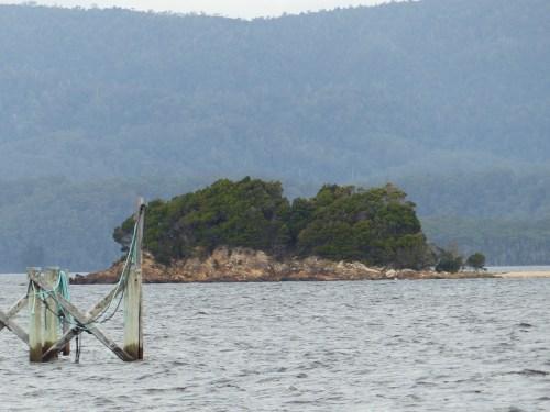 Grummet Island