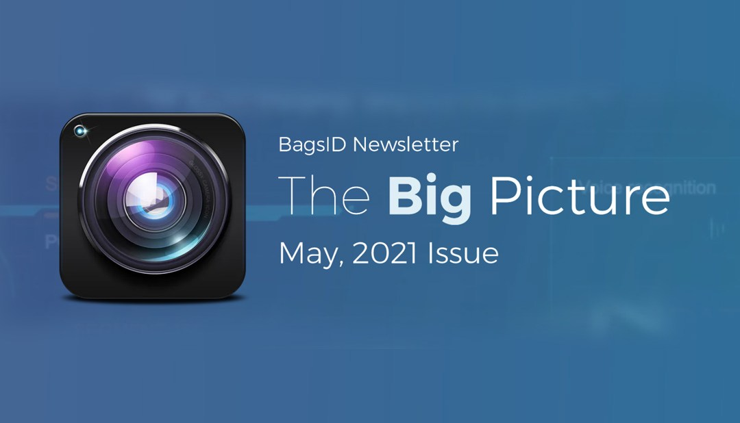 The Big Picture: August 2021