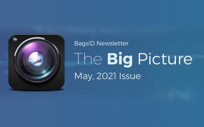 The Big Picture: July 2021