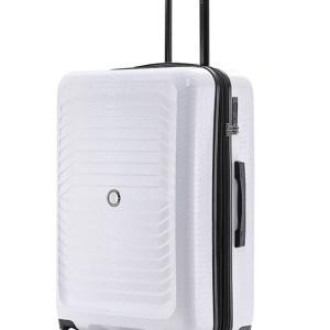 Snake Skin Luggage