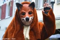 Sondelfinger Füchse