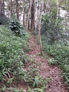 winaca eco cultural village trail 3