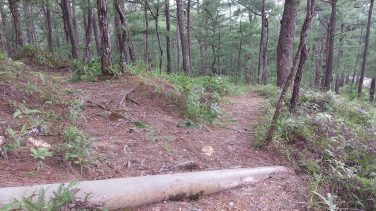 yellow trail camp john hay baguio (8)