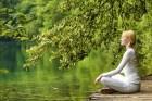 瞑想森林浴