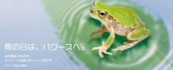 4/1日は「雨の日」セール開催