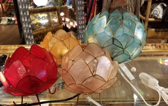 癒しの灯り!カピス貝のランプ入荷。