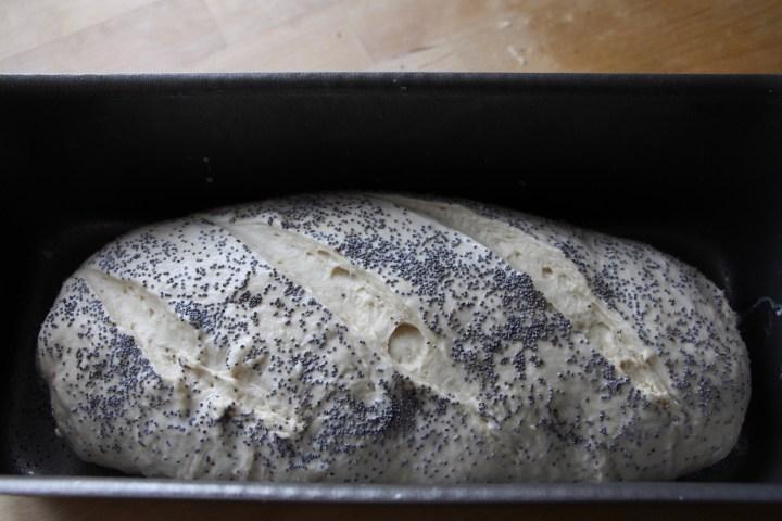 Bageenzymer og franskbrød - en sammenligning fra Bagvrk.dk.