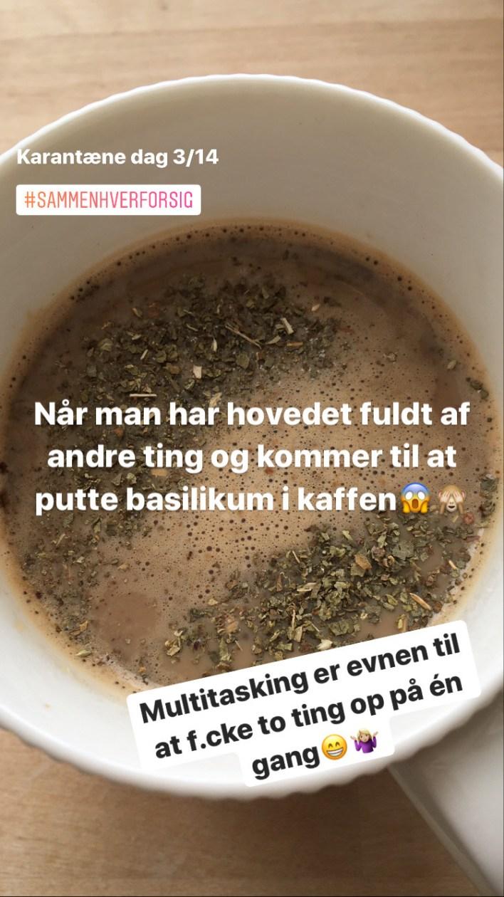 Basilikumkaffe er det nye sort Bagvrk.dk Firstmover