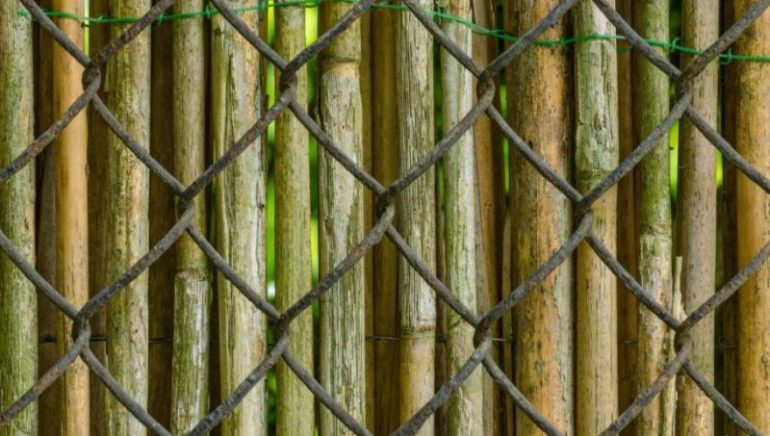 The Most Natural Bamboo