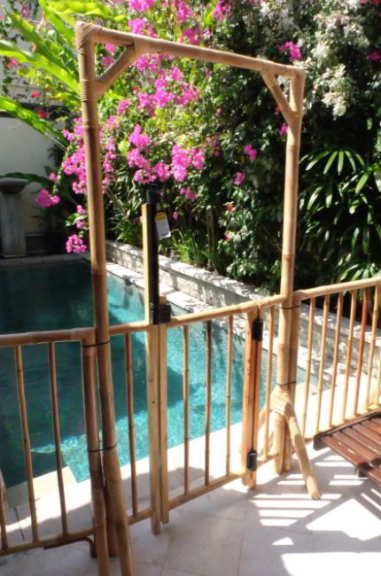 Tropical Plant Fencing Ideas