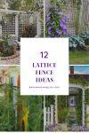12 Inspiring Lattice Fence Ideas to Renew Your Yard Look