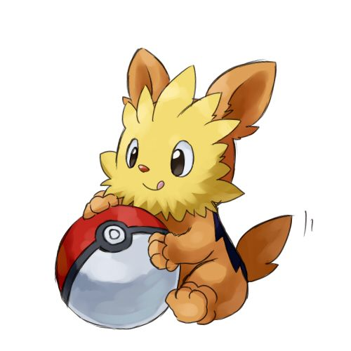 Lillipup pokemon