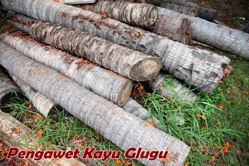 Pengawet Kayu Glugu