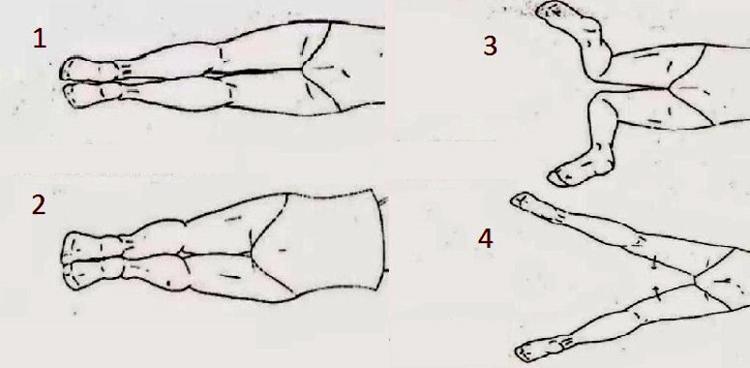 E  A  Teknik Renang Gaya Dada Beserta Gambarnya Materi Lengkap