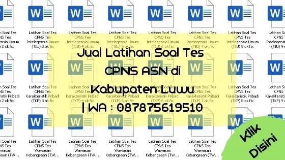 Soal Tes CPNS ASN di Kabupaten Luwu