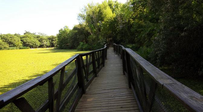 Senderos y pasarelas de la reserva ecológica de Vicente López