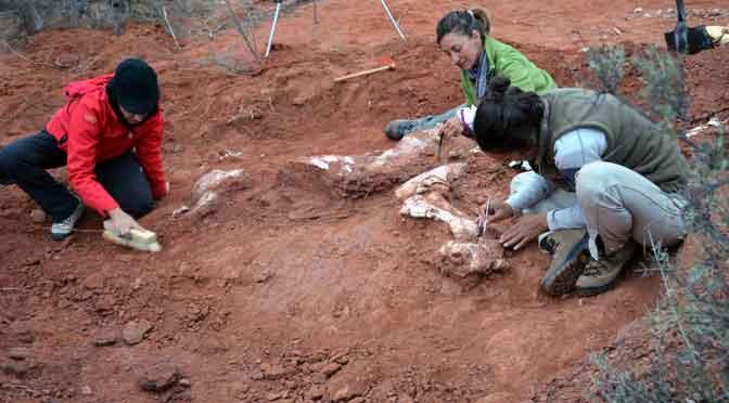 El hallazgo del primer dinosaurio gigante en la Argentina