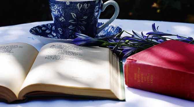 Libros para regalar en las fiestas de fin de año
