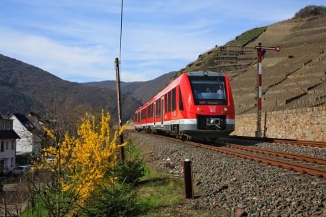 Bei Walporzheim auf der Strecke Remagen - Ahrbrück fährt ein Dieseltriebwagen der Baureihe VT 622 (LINT 54) an einem Weinhang entlang.
