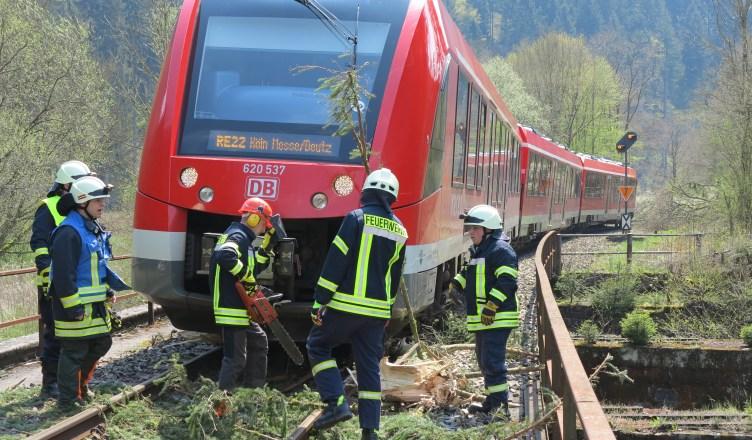 Die Feuerwehr entfernte die unter dem Triebwagen verkeilten Baumreste. Durch den Zusammenstoß wurde der Zug beschädigt und konnte nicht weiterfahren. (Foto: © Bundespolizei)