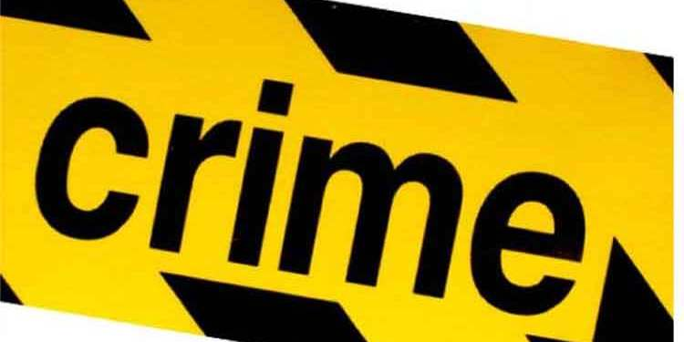 23-year-old kills younger brother