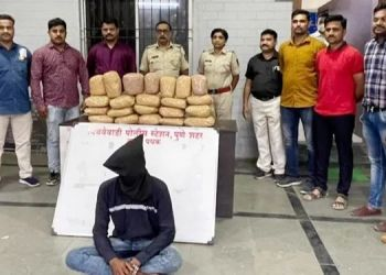 pune-news-22-kg-of-cannabis-worth-rs-5-77-lakh-seized-in-bibwewadi-pune