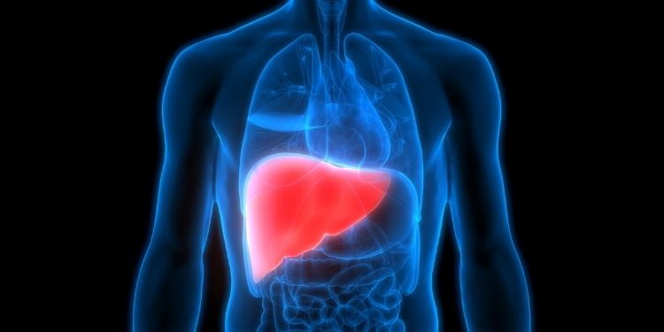 liver-impairment-of-liver-function-due-to-wrong-lifestyle-take-care-of-this
