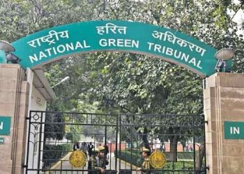 pune-investigate-stone-crusher-and-mine-and-submit-report-type-in-the-morning-command-of-ngt